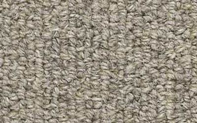 Whole-Room Carpeting Styles