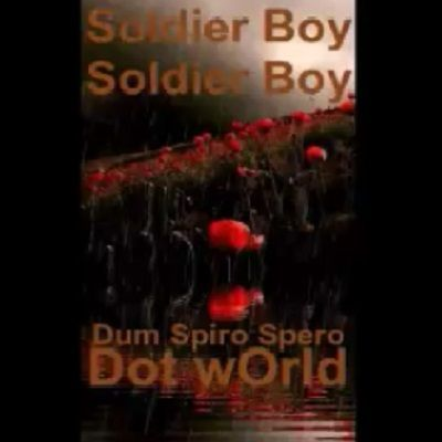 Soldier Boy, Soldier Boy ~ A remembrance day poem about worl