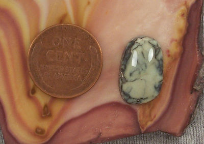 High Gloss Variscite Cabochon 7 cts Silver Peak Nevada for Jewelry Making $8.75