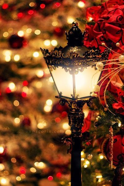 Ana Rosa. Christmas. holidays. streetlight. lantern. lights.