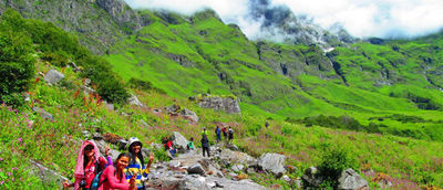 vvvv2.jpghttps://allseasonsz.com/uttarakhand/valley of flowers/valley of flowers tourism.asp