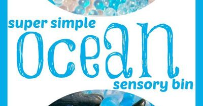 """Super Simple Ocean Sensory Bin -- Despite its """"simple"""" appearance, this bin led to hours and hours of sensory fun for preschoolers on up!"""