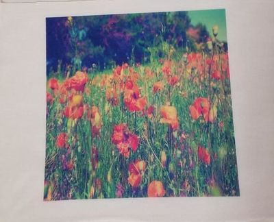 Fabric Panel, Flowers in a Field, 4x4 or 6x6 or 8x8, Poly Quilt Fabric by the Square, Crafts, Quilts, Quilters, Patchwork, Needle Point $7.95