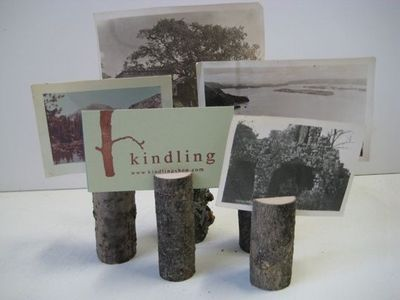 tree branch picture holders. could be cute in the right setting with the right pictures.