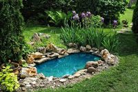 Water feature gives an eye-catching appearance to the landscaping. Hire Eden app and create a beautiful water feature in your yard.