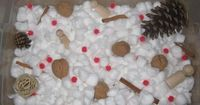 """Winter"" Sensory Tub - cotton balls, cinnamon sticks, pinecones, red pompom or bead ""berries"", nuts, snowflakes"