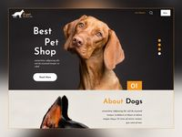 Create an amazing online platform for your pet shop business using this free PSD template. It's built with layouts, photos that you can easily customize.