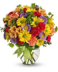 All their wishes will come true when they receive this bright and sunny flower arrangement - a summery mix of yellow daisy chrysanthemums, purple asters, red and orange carnations and more, adorned with a cheerful green plaid bow. Send one today, and make...