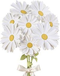 Daisy Flower Kit - Can't get your hands on fresh flowers why not make these...you can decorate with no wilting!