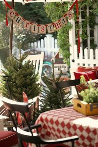 Christmas on my back porch by lucia and mapp, via Flickr