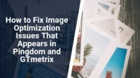 Here are some useful steps which you can use to fix your site image optimization issues that appear on GTmetrix and Pingdom.