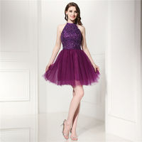 A-Line Pleated Tulle High Neck Beaded Bodice Purple Homecoming Dress