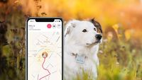 """The Tractive GPS Tracker that allows you to locate your dog and cat anytime, anywhere. See the exact location directly on your smartphone or in any browser. Starting at only $56.85 - Find Your favorite 500+ Stores 'Easy in One Place! #clearanc..."