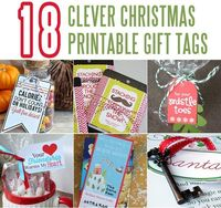 Here are 18 Clever Christmas Gift Tags to help with your gift giving this year! A clever saying can turn an everyday item into a thoughtful gift!