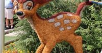 Epcot International Flower and Garden Festival Bambi's Butterfly House, Bambi topiary