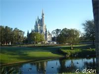 What Disney Tip Are you really glad you listened to? - Page 3 - The DIS Discussion Forums - DISboards.com