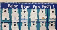 Polar Bear Activity - Writing