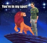 Thats my spot Simba - funny pictures #funnypictures
