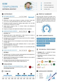 software-architect-infographic-resume-sample-mcdi0011.png