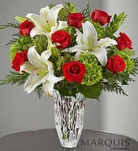 Here's a sparkling new surprise to celebrate the holidays! Our expert florists skillfully arrange elegant white lilies, rich red roses and lush mini green hydrangeas inside this stunning Marquis by Waterford® crystal vase, which lets their vibrant ...