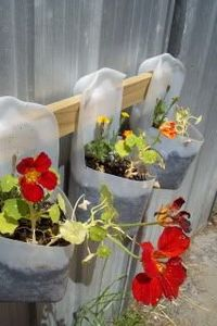 Great use for all those empty milk jugs we recycle...plus added bonus of more color this summer :)