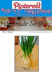 """""""repost-it"""" Challenge: Don't throw out you Green Onion Stems. Put them in water and REGROW!!!   If you are reading this then you have 1 week to create the picture and post!!! Don't forget to tag your Pinterest obsessed friends to join ..."""