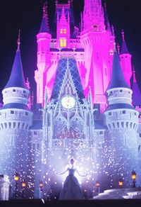 A Dream Is A Wish Your Heart Makes photographer: Olivia Bee location: Walt Disney World