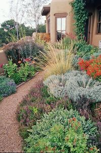 A colorful Xeriscape garden design by Susan Blake of Santa Fe, New Mexico, features many beautiful drought tolerant species, including Zauschneria, Stachys, Centranthus, lavender, Yarrow, Iris, Russian Sage, Gaillardia, and many ornamental grasses includi...