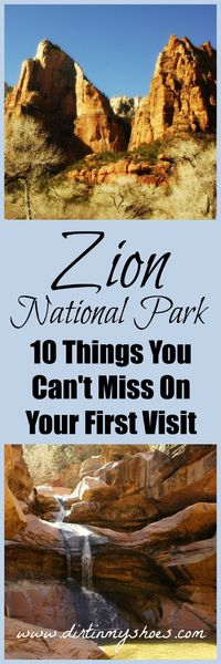Zion National Park is a land of enchantment. Don't miss this list that includes hikes and activities for every skill level in Zion National Park.