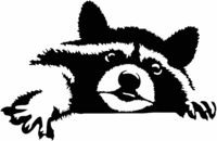 Raccoon Just for: $24.99