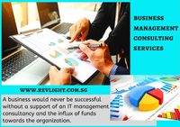 Check more detail at: https://www.revlight.com.sg/business-management-consulting-services/