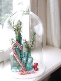 Playing up the Curiosities: I like the idea of a clouche in every window with a curiosity display of things that are Savannah. Shells, River Rock, Savannah Grey brick, Greenery, Sea Grass flowers, Images of Food, Need to figure out how many window sills w...