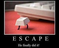 "Escape ... we have a little of ""this"" in all of us... how you ""escape"" is your choice......."