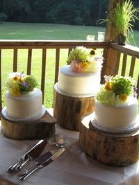 I'm going to need Brian to make these for the wedding. Where can you buy logs?