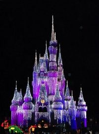 Magic Kingdom Castle on Christmas night