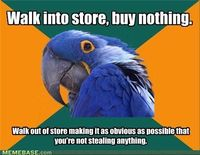 haha paranoid parrot is my life. I always feel guilty for not buying anything.