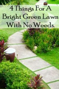 Landscape Design Ideas are all around us; inspiration for your ideal xeriscape garden