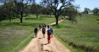 Hiking - Any park or nature reserve, forest or mountain can offer you innumerable paths to hike along. Tour operators can give you a list of hiking trips including shorter day hikes, overnight hikes, and longer hikes that last a few days. They will also b...