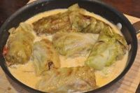 German food: White Cabbage Rolls in creamy gravy.