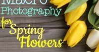 Learn Macro Photography for Flowers from the Experts!