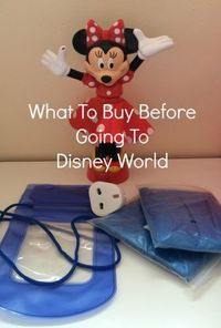 I've learnt a fair bit from two Disney World visits and have discovered what to buy before going to Disney World and how it can save you money