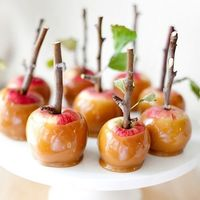 we always make caramel apples in the fall, but the sticks make it so much cuter!!!