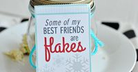 """Cute holiday tags printable """"Some of my best friends are flakes!"""" Make with snowflake apples from www.thirtyhandmadedays.com"""