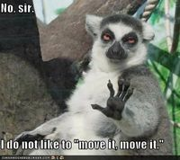 No, Sir. I do not like to 'move it, move it.'