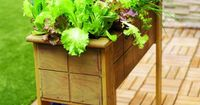 Small-space salad box Having fresh greens at your fingertips is one of the best parts of the growing season. And with a raised planter right outside the kitchen door, you can have a continual supply of salad greens nearly year-round. You can make one usin...