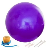 65cm Anti-Burst Yoga Balloon Gym Balance Stability Fitness Ball Gymnastic Exercise with Air Pump Yoga Accessories Home Workout $50.99