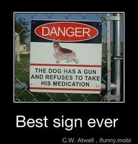 The dog has a gun and refuses to take his medication.