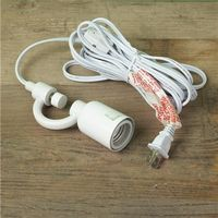 Swag Pendant Converter with Cord and Plug - $29.00