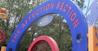 """The Affection Station �€"""" Up Close And Personal With Real Animals At Disney"""