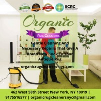 Organic rug cleaners is a family based business active in NYC since 2004, we use organic products for cleaning rugs, carpet and upholstery. We are IICRC certified which displays our sobriety about prosperity, safety and environmental concern. Call us now ...